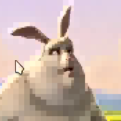 bunny-zywrle2.png