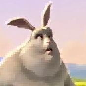 bunny-zywrle5.png